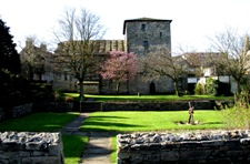 picture of Priory Gardens. Click here to view a larger image, 161kb